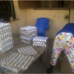 Farming4food-project-eieren-markt